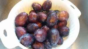 Plums from our walk